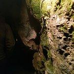 Photo de Aillwee Cave