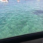 Photo of Nautica Jasmine