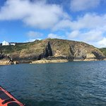 Foto de Voyages of Discovery (Ramsey Island)