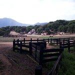 Parc Naturel d'Olva照片