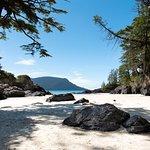 Bilde fra Cove Adventure Tours