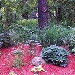 Shade gardens at Plant's Herb Farm B & B