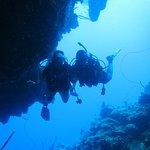 Фотография Living The Dream Divers