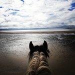 Fotografie: Pony Trekking at Bwlchgwyn Farm
