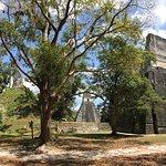 Temple II resmi