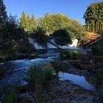 Foto de Tumwater Falls Park