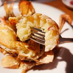 Canadian Wild Lobster
