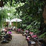 Fern Forest Cafe照片