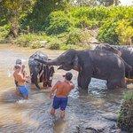 Chiang Mai Trekking照片