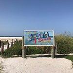 Photo of Siesta Beach