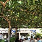 Foto di Restaurant Cala Canyelles