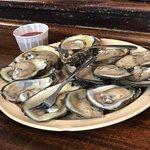 Dozen Oysters - $7.95