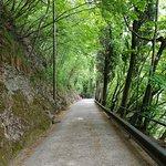 Foot path.