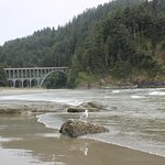 View from Heceta Head Beach
