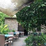 Photo of Bodega Can Mora des Vi
