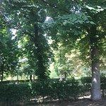 Foto di Parco del Ritiro (Parque del Retiro)