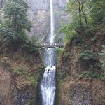 Фотография Eco Tours of Oregon