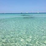 Фотография Playa de Llevant