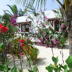The cottages are a good distance from each other with pure white gravelled paths and lots of gre