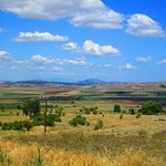 Plains of Boeotia and location of the Battle of Plataea (479 BC)