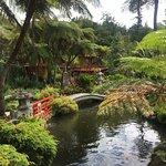 Photo of Monte Palace Madeira