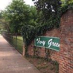 ภาพถ่ายของ Ivy Green