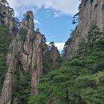 西海大峡谷の写真