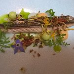 seared mackerel starter