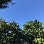 Photo of Inokashira Park Zoo