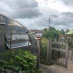 Фотография Zingerman's Roadhouse