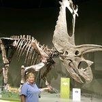 Foto Sam Noble Oklahoma Museum of Natural History