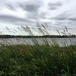 Foto de Pitsford Reservoir - Pitsford Water Park