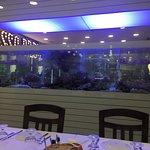 Pesce fresco  Pesce crudo e cotto  Squisito