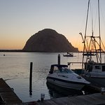 Foto de Morro Bay National Estuary