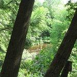 Vue sur la rivière Gentilly
