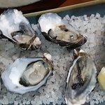 Foto di 12 Rocks Cafe and Beach Bar