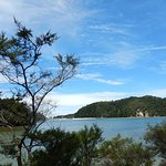 Photo of Wilsons Abel Tasman