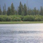 Foto Vermilion Lakes
