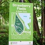 John Lennon/Strawberry Fields