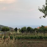 Photo of Agriturismo Seaview