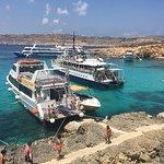 Photo of Hornblower Cruises
