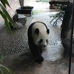 Photo of Berlin Zoological Garden