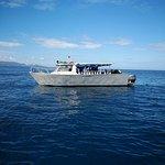 Photo of Beqa Adventure Divers