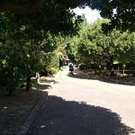 Photo of Sagamihara Kita Park