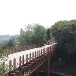Bilde fra Dandi Bridge