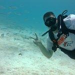 Photo de Heart & Soul Divers