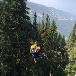 Photo of Ziptrek Ecotours