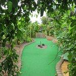 Fun golf holes.