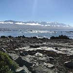 Photo of Kaikoura Peninsula Walkway