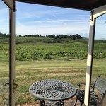 Three Choirs Vineyards Restaurant Foto